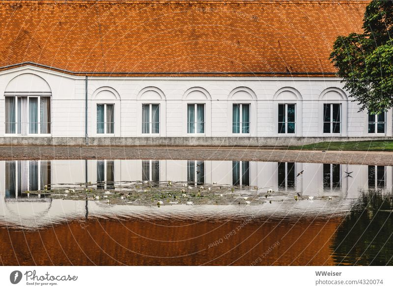 On a summer day the façade of the castle is reflected in the pond over which the swallows fly Lock Facade Summer reflection Water Pond Surface birds Swallow