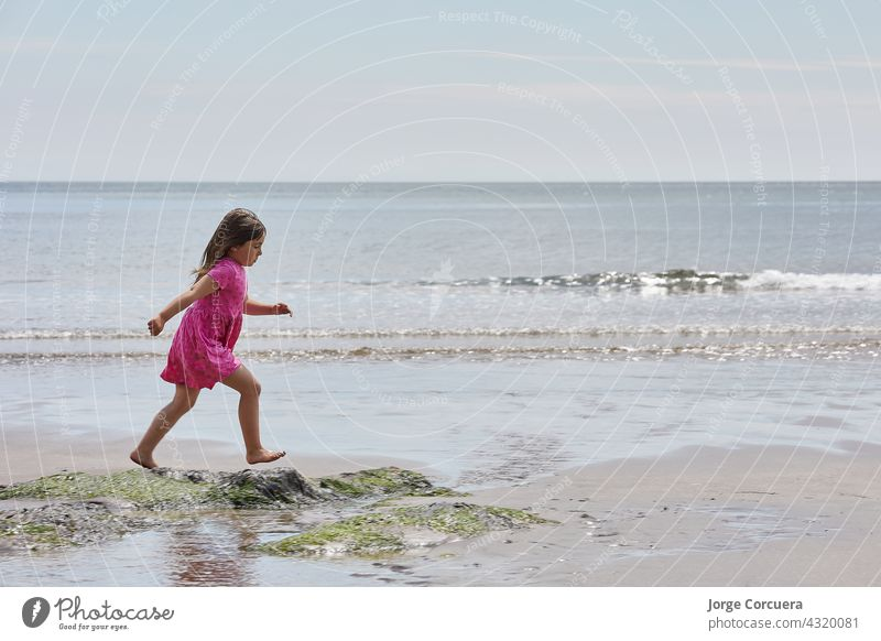 Adorable toddler girl playing with beach on white sand beach adorable kid summer young child childhood sea person cute caucasian lifestyle tropical coast people