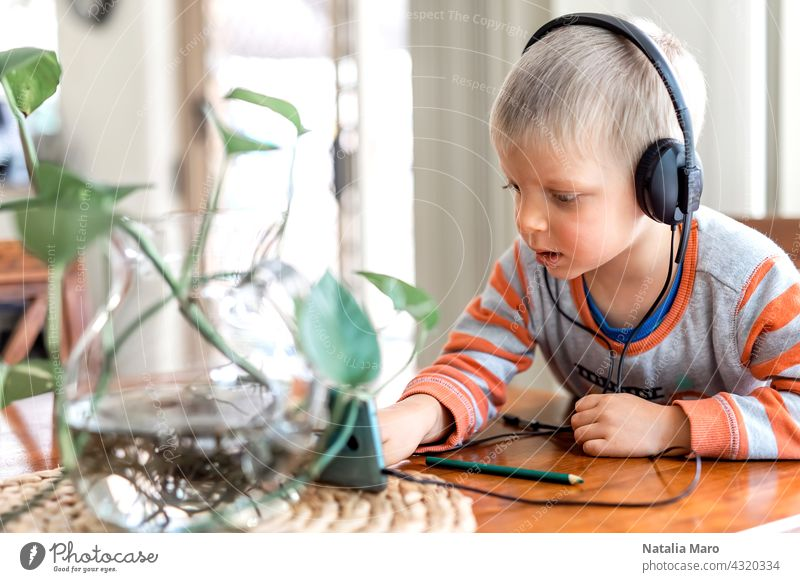 Little boy wares headphone and playing the cell phone child headphones house mobile phone gadget kid headset watching technology internet listening face leisure