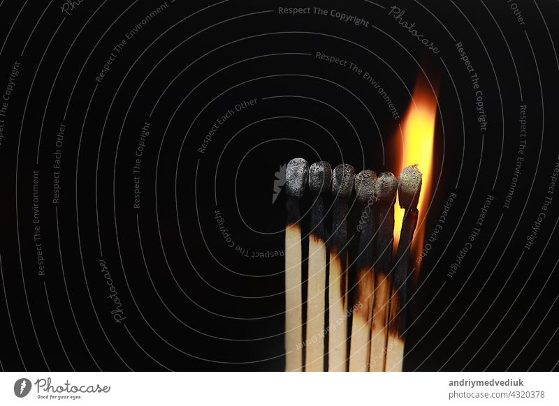 Burning matches on black background. matchsticks on fire in row of burning is sequence while one match stay down from burning to avoid fire connecting against black background