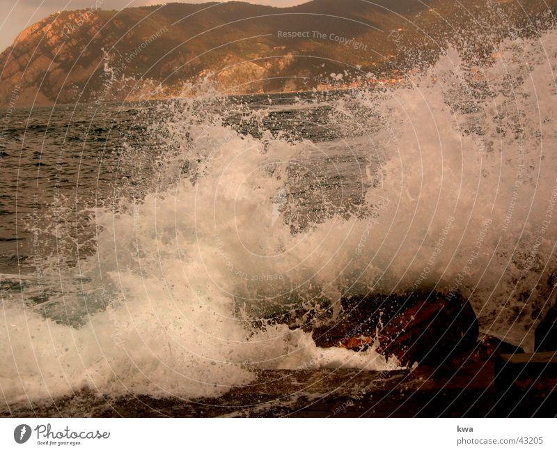 surf Surf Ocean Cinque Terre