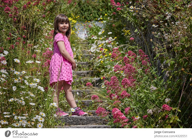 girl in a pink dress surrounded by flowers in nature. The boy is standing on some stairs. floral toddler kid joy innocence fluffy meadow playful multicolored