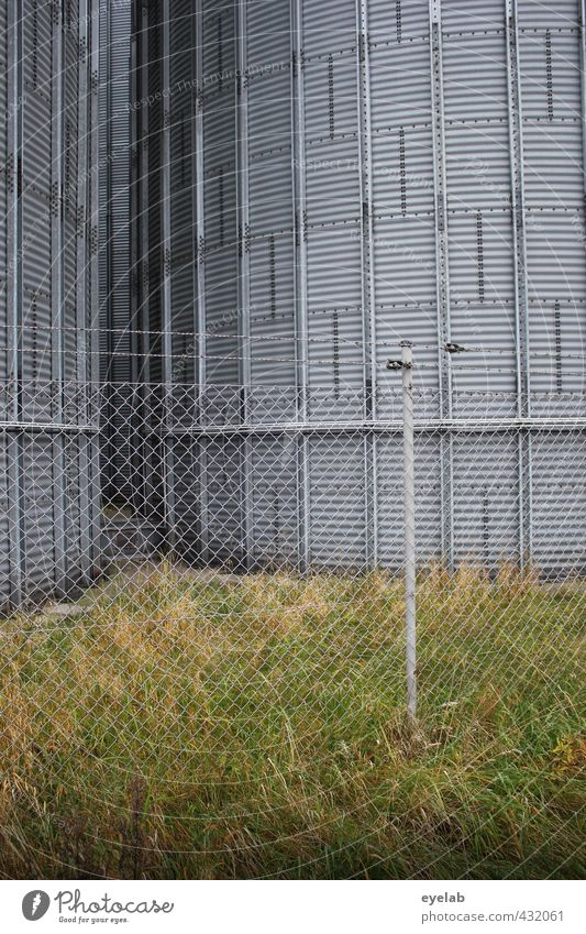 Green Cold Wall (building) Grass Wall (barrier) Architecture Building Gray Metal Energy industry Tall Gloomy Technology Safety Industry Agriculture