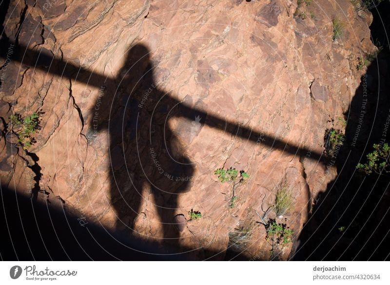 Big photographers shadow at Kings Canyon. The photographer with bag walks on the way up. Photographer Man Human being Shadow Silhouette Adults Exterior shot