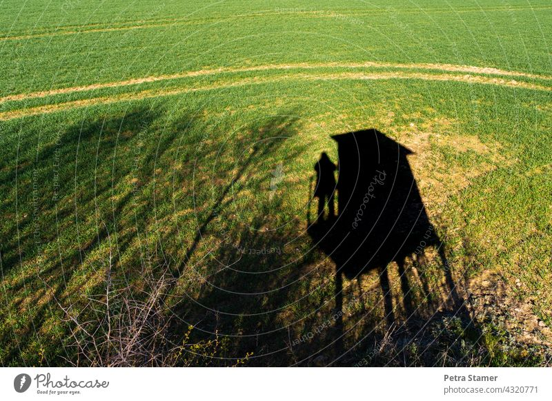 Photo Hunter photo hunter Shadow Shadow play Hunting Hunting Blind Vantage point Field Landscape Nature Tree Green Black Exterior shot Observe Stand Human being