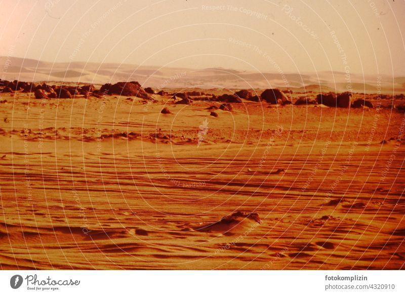 Sahara Wüste Desert Africa Sand Vacation & Travel Adventure Deserted Landscape Nature Dune Warmth desert Sun dry Hot Extreme arabic Safari land Loneliness Scene