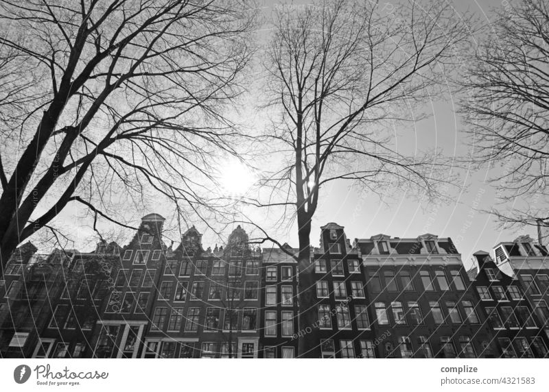 Winter in Amsterdam Netherlands Town canals houses black and white Downtown Channel Historic Old Tourist Attraction trees Cold
