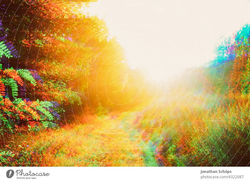 Sunny appearance in nature glitch effect Transcendence sunny Summer psychedelic Dimension Sky glitch art distortion vibration system errors Defective Abstract