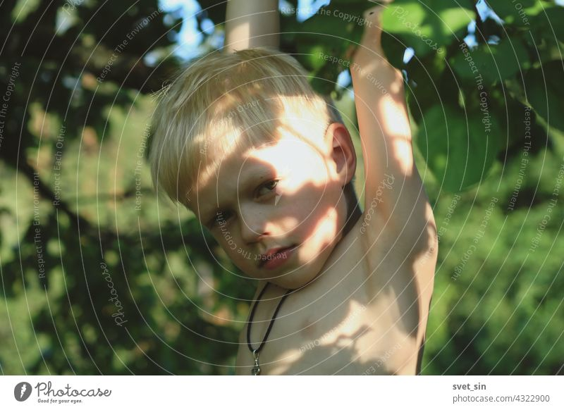 A blond little boy with an Orthodox cross on his chest hangs on an apple tree, holding on to a branch, in a sunny summer garden. Happy childhood in the village. Portrait of a blond boy with sun glare on the skin.