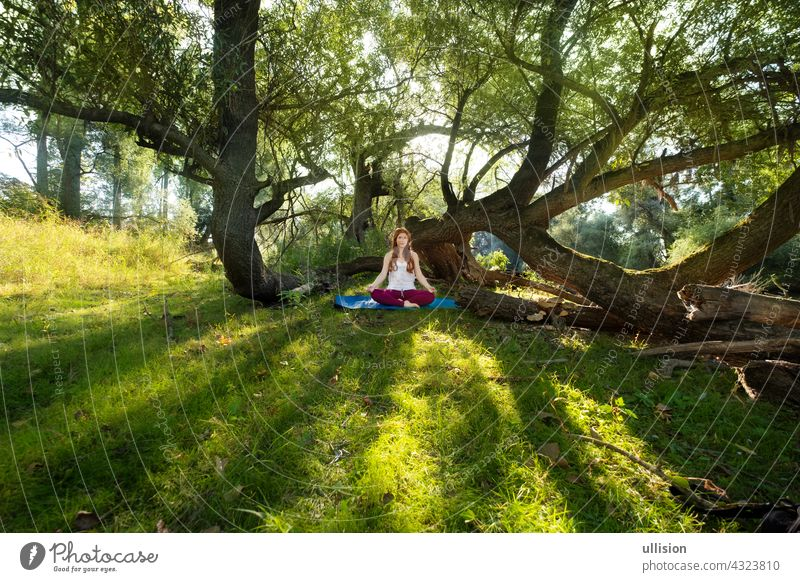 Young red-haired woman doing yoga exercises in nature in sportswear in the sun in the woods sexy fitness wellness girl young smiling joyful adults beautiful