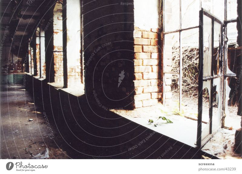 This Is Our Sound Window Light Industrial district Leipzig Analog House (Residential Structure) Derelict Ruin Architecture Shadow Open Graffiti