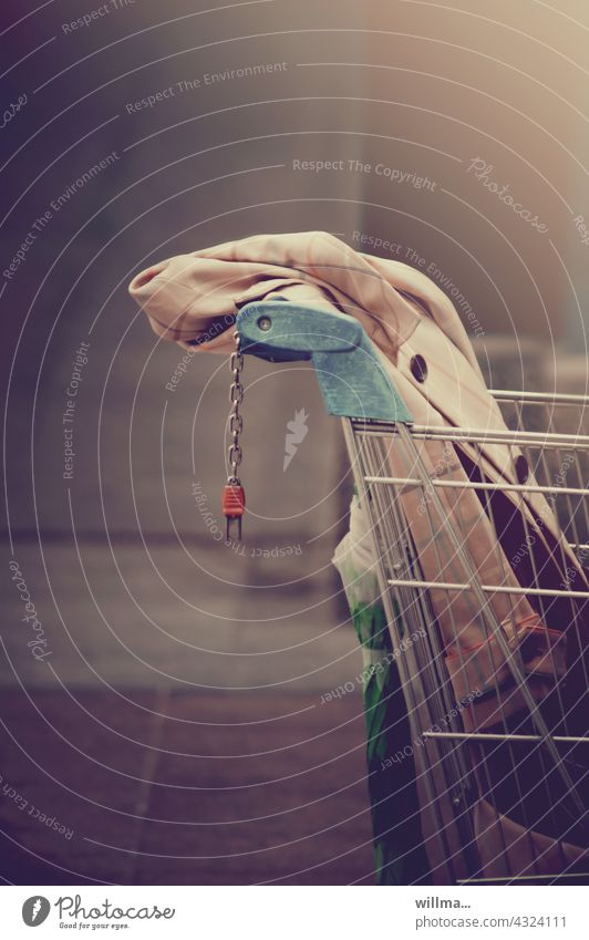 I'm going to make a purchase. shop Shopping Trolley SHOPPING purchasing