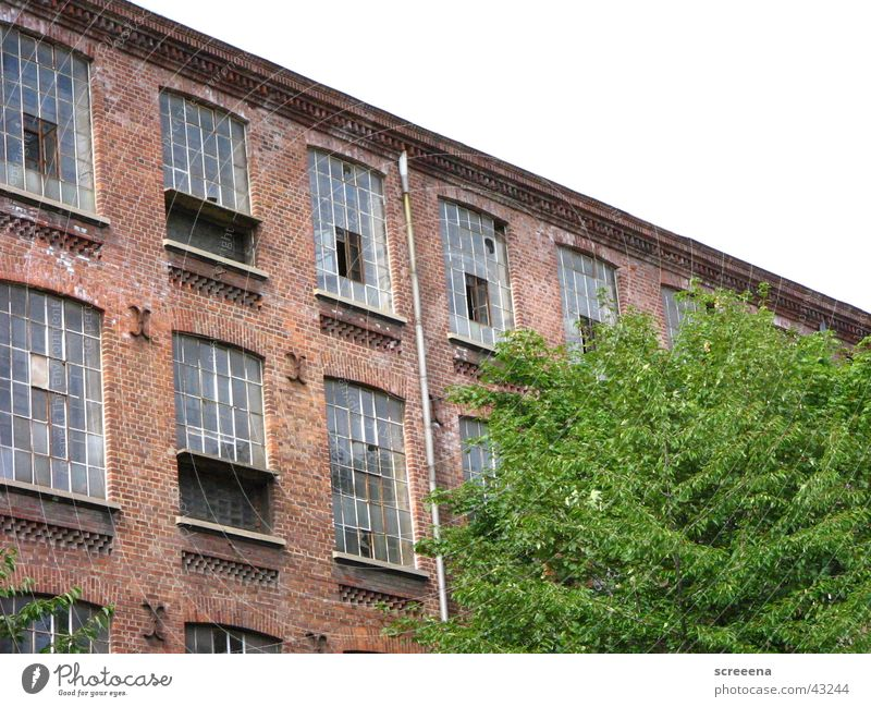 cotton spinning mill leipzig House (Residential Structure) Brick Window Tree Green Red Architecture Industrial Photography Sky Perspective