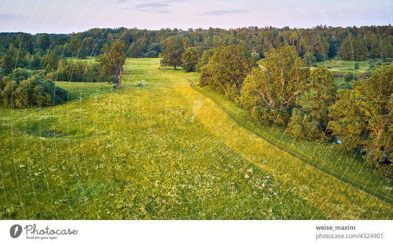 Oak trees Summer sunny landscape. Picturesque countryside fields. Warm evening light. green meadows, beautiful sunset river summer nature aerial forest water
