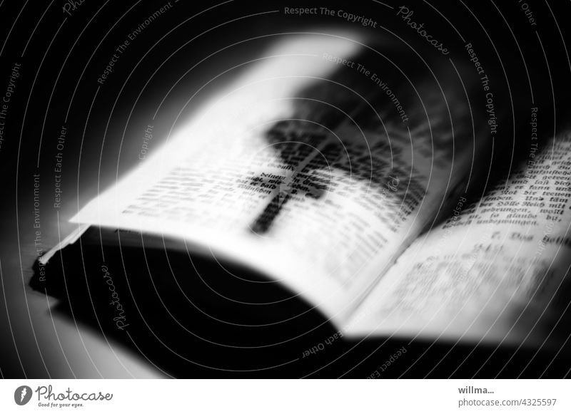 the scriptures. the shadows of religion. faith and knowledge. Bible Book holy script Belief Know Crucifix Shadow Struck symbol symbolism Religion and faith