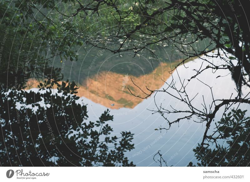 Nature Vacation & Travel Water Tree Landscape Environment Mountain Lake Rock Hiking Wet Peak Alps Dusk Pond Surface of water