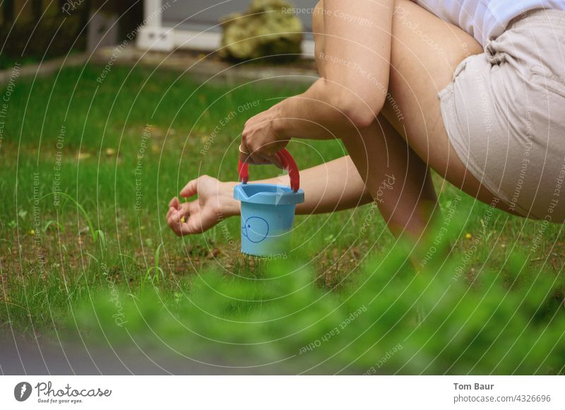 The good ones into the potty - woman kneeling in the lawn and picking up stones to put them into a small blue bucket pick up Lawn Landscape Nature Colour photo
