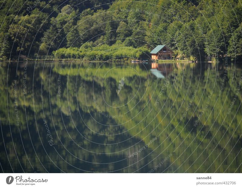 Mirroring II House (Residential Structure) Dream house House building Redecorate Water Summer Tree Forest Lakeside Bay Bosnia-Herzegovina Village Deserted