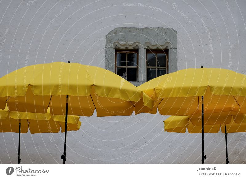 four yellow parasols in front of a grey wall with window Sunshade Yellow Window Economy Summer vacation Relaxation Restaurant Tourism Wall (building)