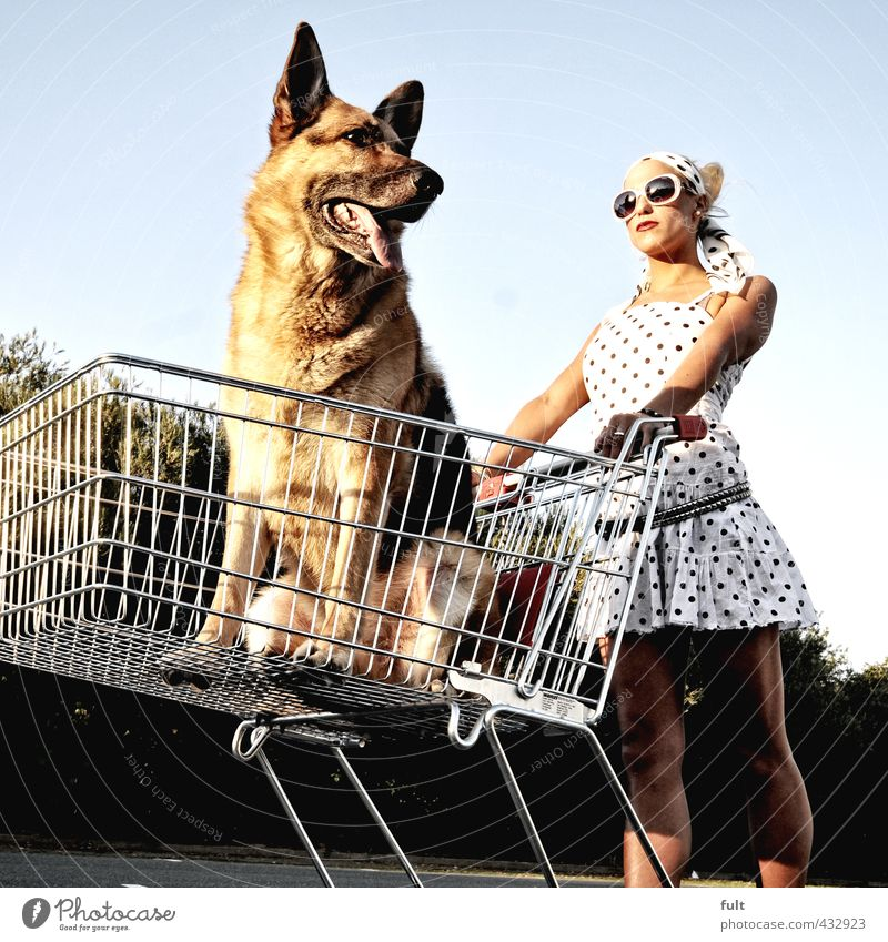 Shopping Human being Feminine Body 1 18 - 30 years Youth (Young adults) Adults Animal Dog Shopping Trolley Shepherd dog Woman Point Colour photo Exterior shot