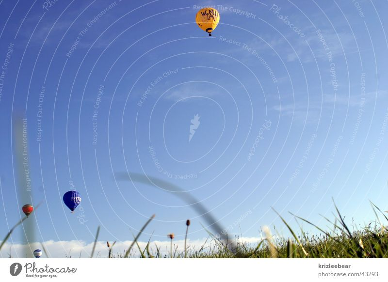 Meadow Grass Air Aviation Driving Hot Air Balloon Blade of grass