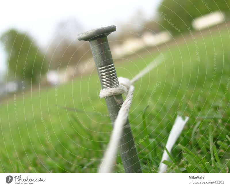 Meadow String Lawn Playing field Nail