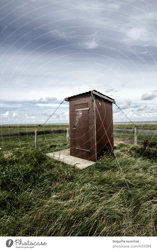 The dirtiest toilet in Scotland... Environment Nature Landscape Sky Clouds Grass Island Neuwerk Fishing village Lighthouse Toilet Outside toilet Garden Blue
