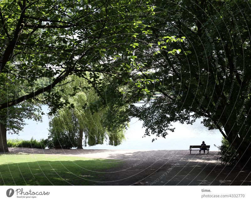 ParkTourHH21   Bank am See Bench bench Woman on one's own Tree trees Lonely Peaceful Doomed Relaxation recover Break Tabloid Meadow off Water tranquillity Lake
