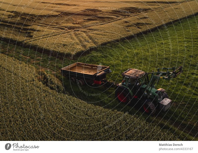 Grain Harvest Tractor Landscape Agriculture Nature fields field management peasant Cornfield