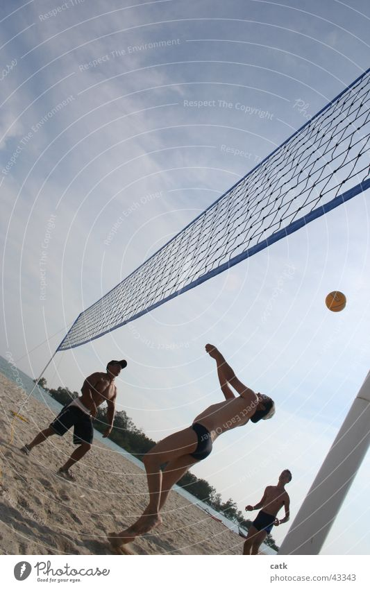 Human being Youth (Young adults) Beach Adults Sports Playing Coast Sand Wait 18 - 30 years Masculine Stand Sports team Beautiful weather Ball Net