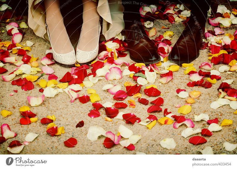 moments after Entertainment Party Event Feasts & Celebrations Wedding Masculine Feminine Couple Partner Feet 2 Human being Rose leaves Park Footwear High heels