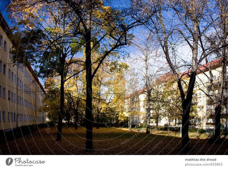 inner courtyard Environment Nature Sky Clouds Autumn Beautiful weather Plant Tree House (Residential Structure) Manmade structures Building Architecture