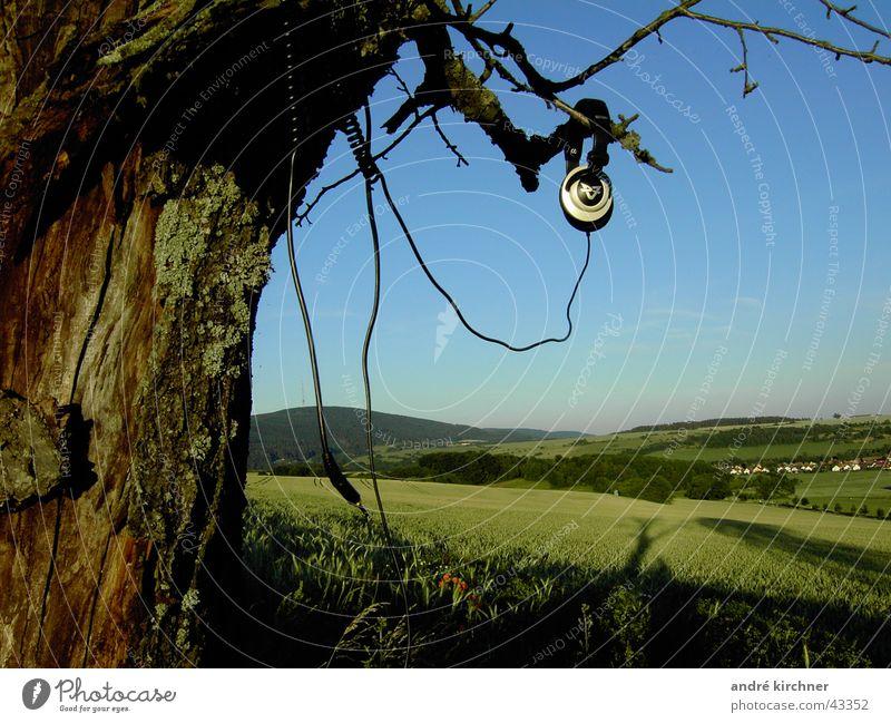 tonewood Headphones Field Tree Summer Cable Tone