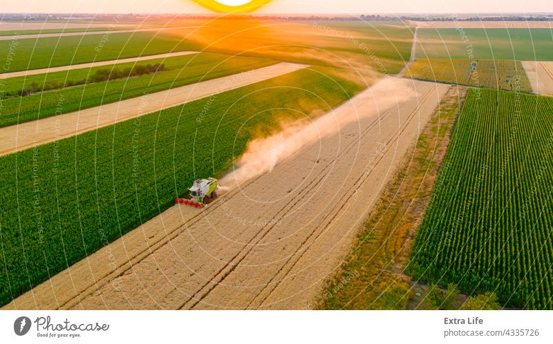 Above view on combine, harvester machine, harvest ripe cereal at sunset Agricultural Agriculture Cereal Combine Country Countryside Crop Cultivated Cultivation