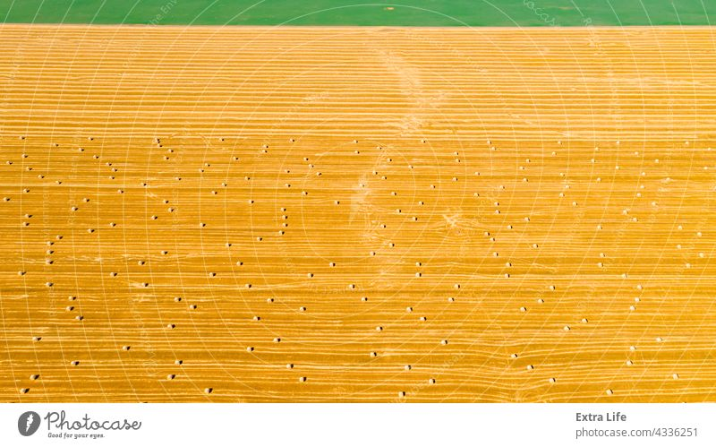 Aerial view of field with lined straw bales on farm fields Above Across Agricultural Agriculture Bale Cereal Country Crop Cultivated Cultivation Dolly Dry Farm