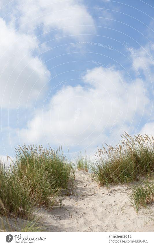 blue sky with clouds and a dune rise Ocean Sky Clouds duene dunes Beach Sand Landscape Nature Vacation & Travel Tourism Relaxation Marram grass destination Blue