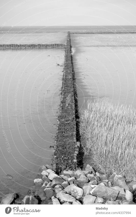 Coastal protection by barge construction in the Wadden Sea World Heritage Site in autumn in Bensersiel near Esens at the North Sea in East Frisia in Lower Saxony, photographed in neo-realistic black and white