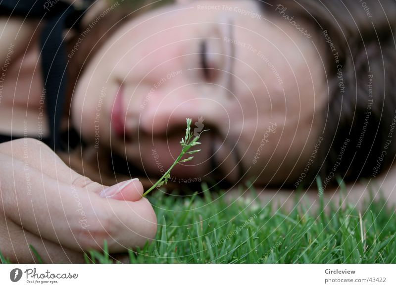 Really not sad Woman Grass Blade of grass Hand Fingers Closed Portrait photograph Face Lawn Head Eyes Sleep