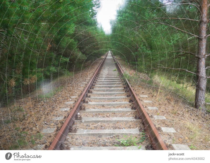 on rusty rails through densely overgrown forest Railroad tracks lost places Traffic infrastructure Double exposure Ravages of time Decline Apocalyptic sentiment