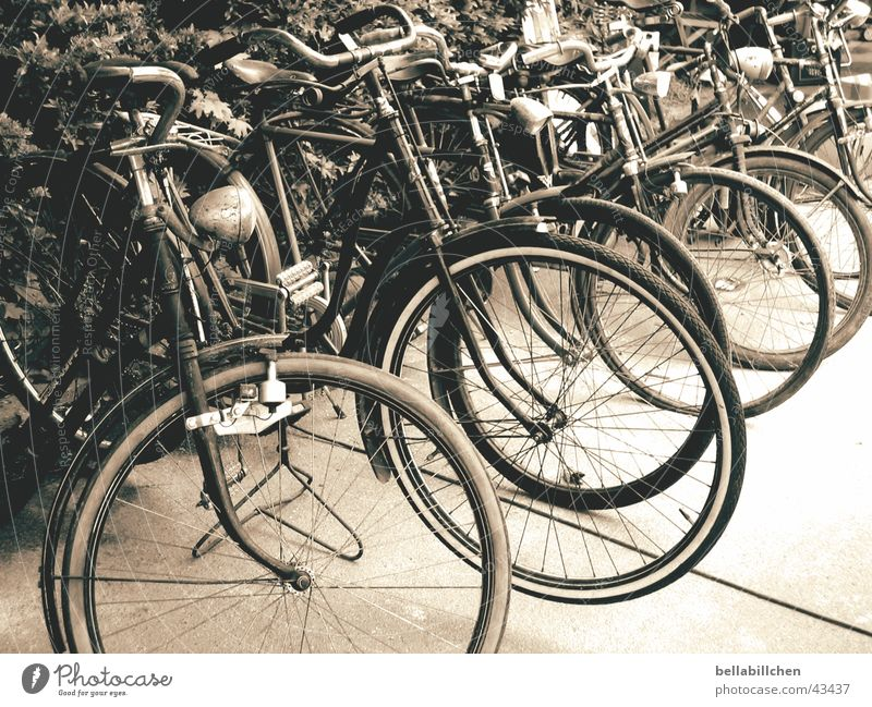 old bikes Bicycle Nostalgia Mobility Transport