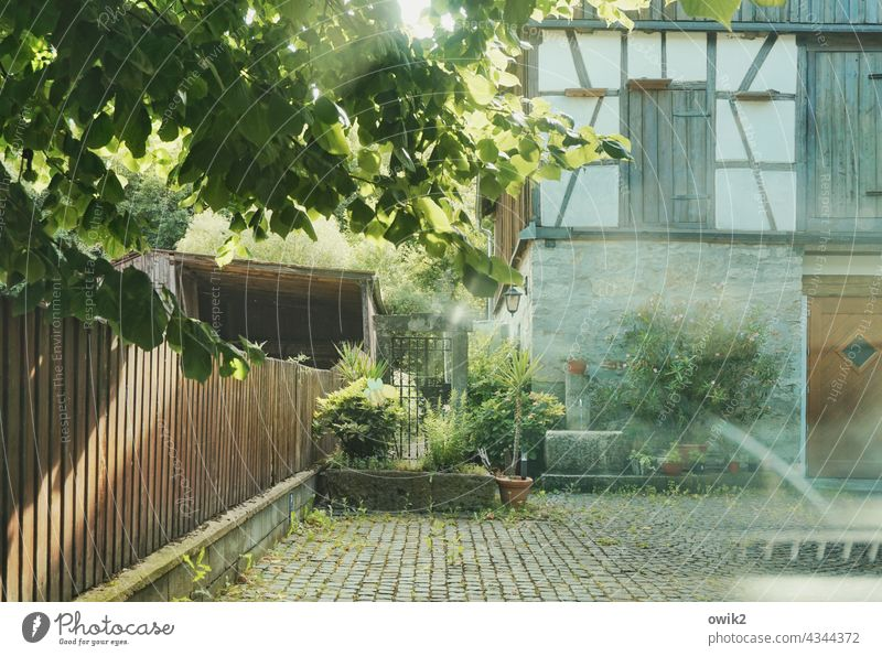 Upper Franconia Courtyard Fence silent Peaceful Sunlight foliage Laubbeum Roof plants House (Residential Structure) Building Barn half-timbered Window door