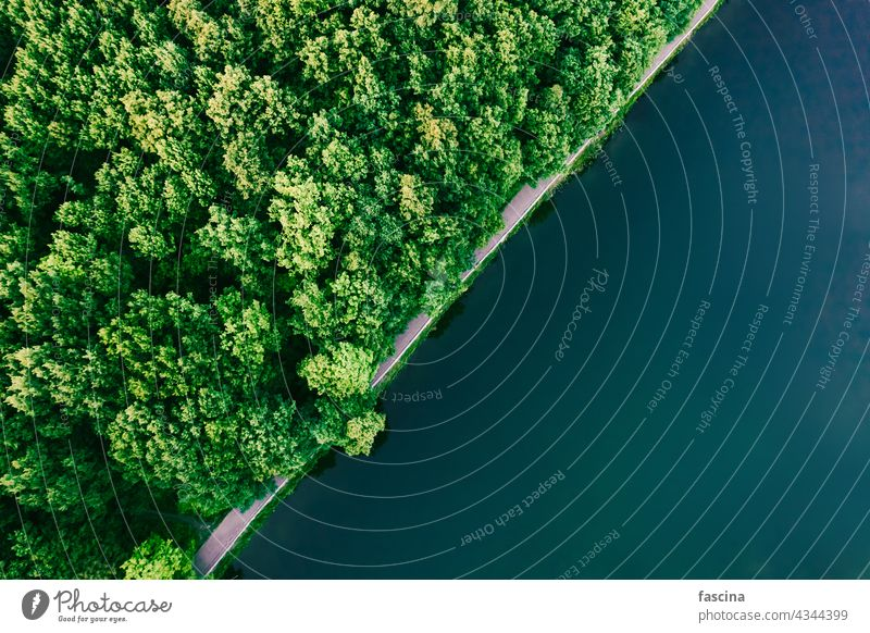 Green forest and water aerial top view, copy space surface texture diagonal copyspace lake turquoise park trees green deciduous summer nature natural above