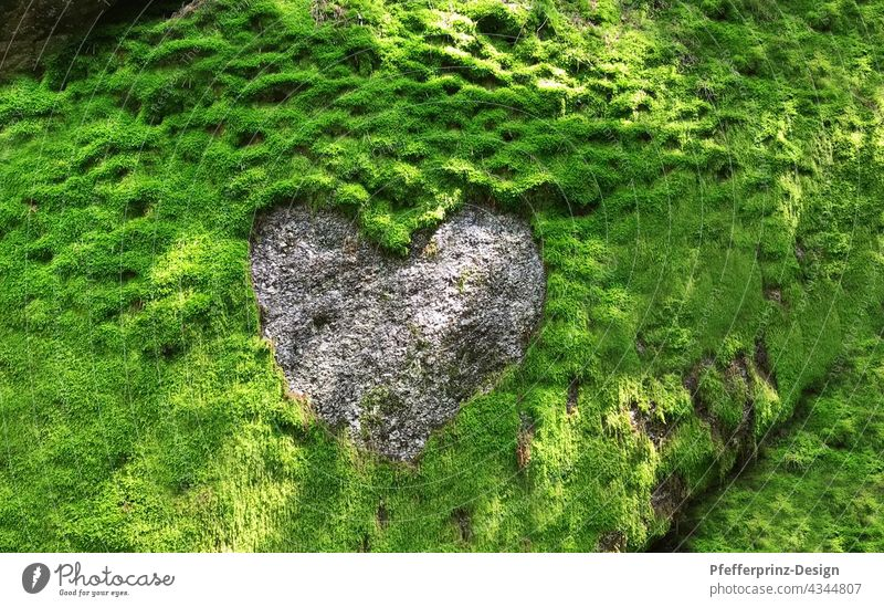 Moss rock with a heart structure of granite moss cliffs Granite Heart Heart-shaped heart of stone Green