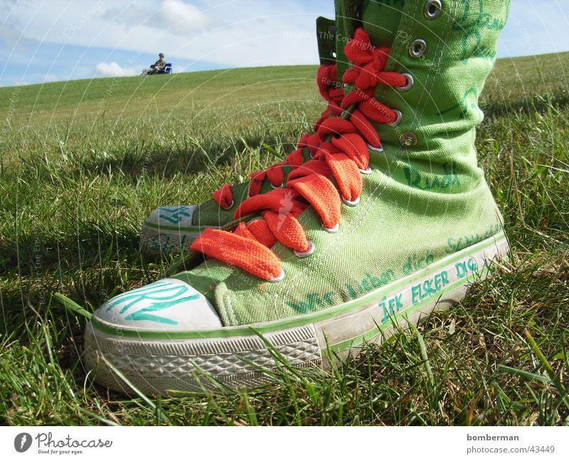 Meadow Lawn Sneakers Chucks Footwear Shoelace Casual shoe
