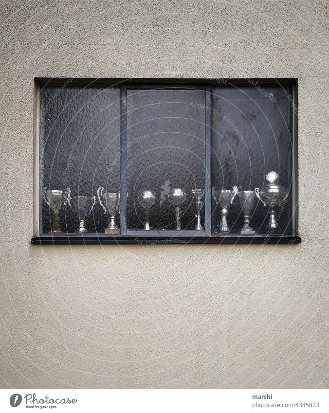 Champion of the cups Cups winners Sports match contest Window Collection home away from home Athletic First Abstract urban unpeopled Trophy emotion remembrances