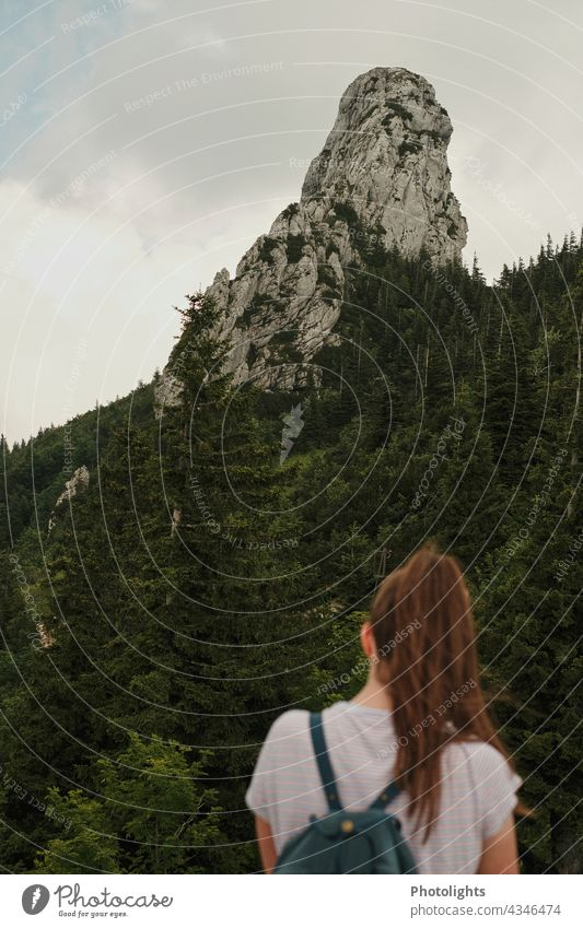 Young woman looking at a rock Alps Woman Ponytail Backpack Forest trees Green Gray Brown Clouds Chiemgau mountain Nature Landscape Hiking Tourism Mountain