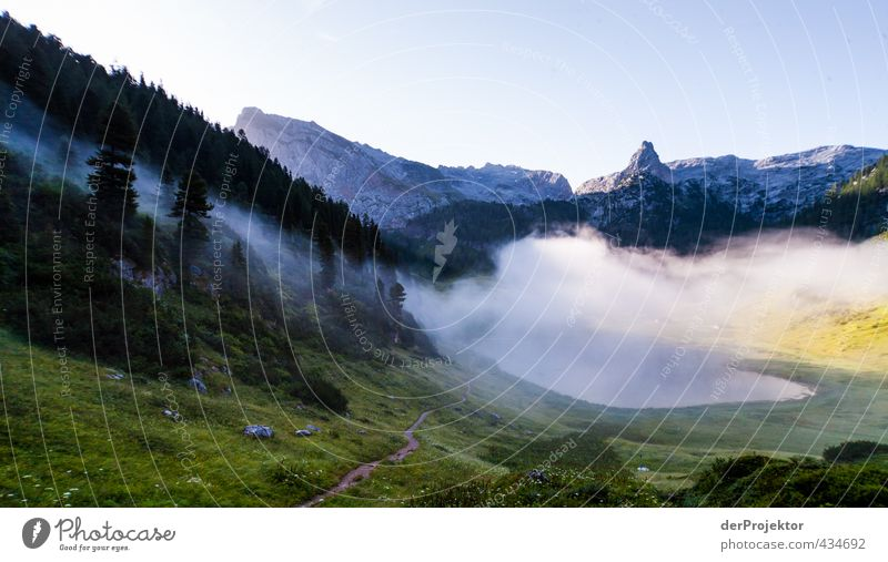 Funtensee in the morning mist at Könnigsse Hiking Environment Nature Landscape Plant Elements Cloudless sky Sunrise Sunset Summer Climate Beautiful weather Fog
