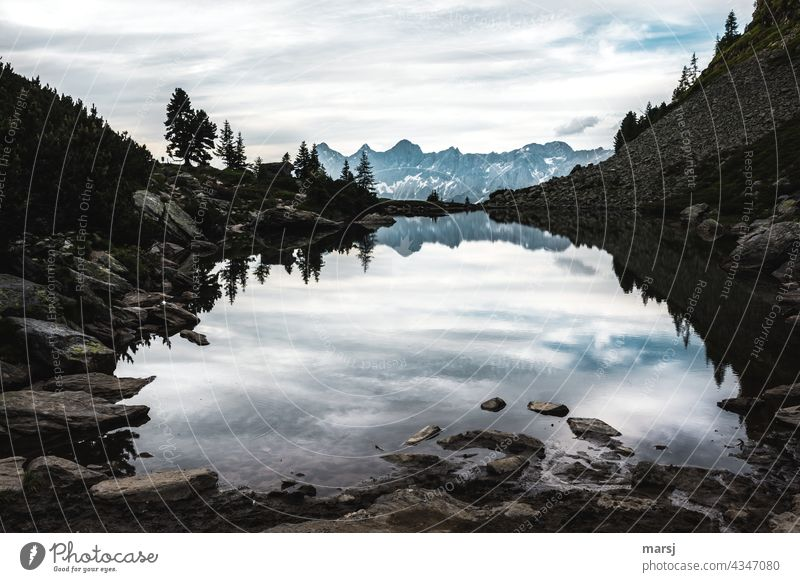 Come to rest at the mirror lake on the Reiteralm. With a view of the Dachstein. Mountain lake Mirror Lake Calm Morning Vacation & Travel Wide angle