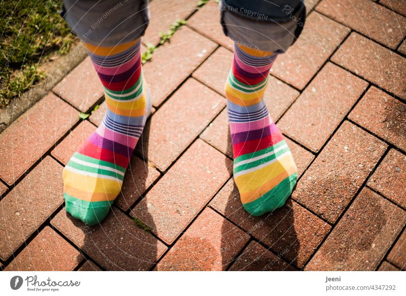 Diversity | through the world with colourful socks on your feet stocking Stockings variegated curled motley Mixed Striped socks Clothing Fashion trend