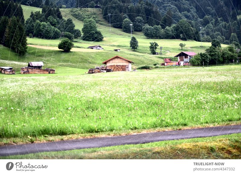 A few wooden huts and many bushes and trees are standing around on a hilly green meadow landscape in the nature park Ammergau Alps in Upper Bavaria and a piece of bicycle path can be seen as well.